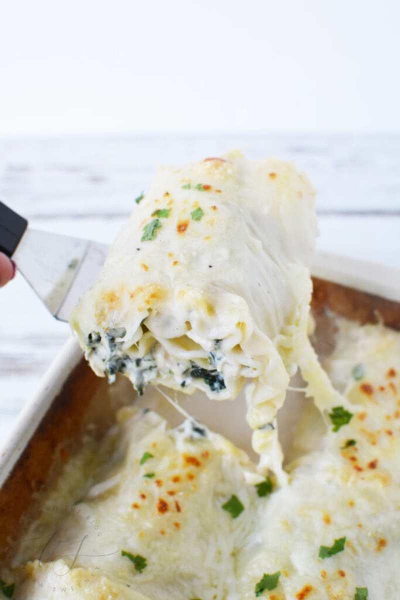 lasagna-rollups-683x1024