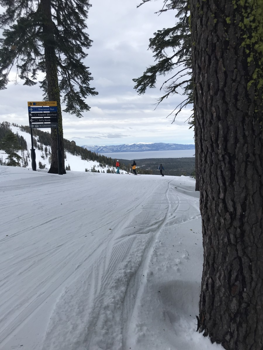 Squaw vs. Alpine Ski Experience