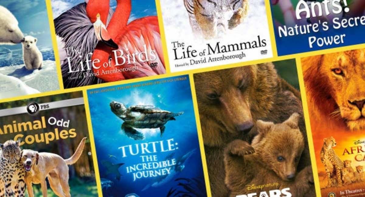 best-nature-documentaries