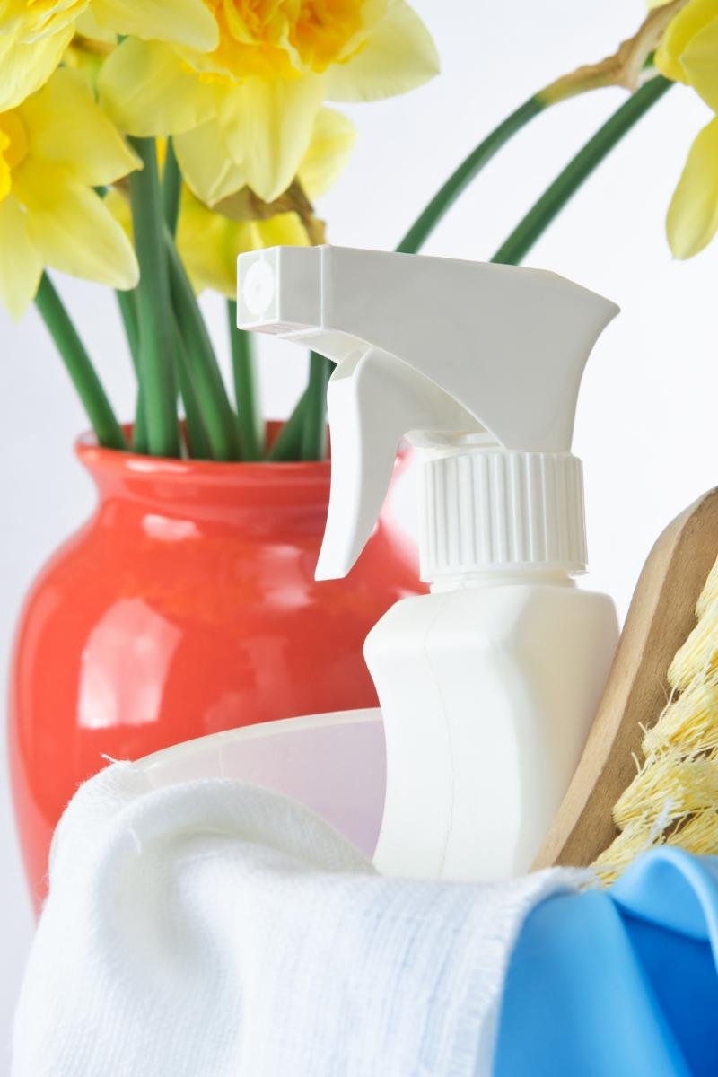 spring cleaning zen